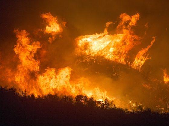 pożar w portugalii